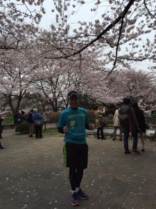 20160402_sakura_kugi